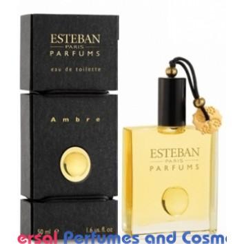 Ambre By Esteban Generic Oil Perfume  50ML (001241)