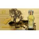 Ghusoon 100 ml Oriental Eau De Parfum By Surrati Perfumes